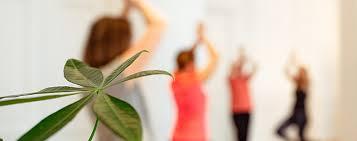 Le yoga des orthos: une expérience à retrouver en vie pro!